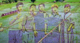 Изображение на рисовом поле, созданное путем выращивания различных сортов риса, Ляонин, Китай